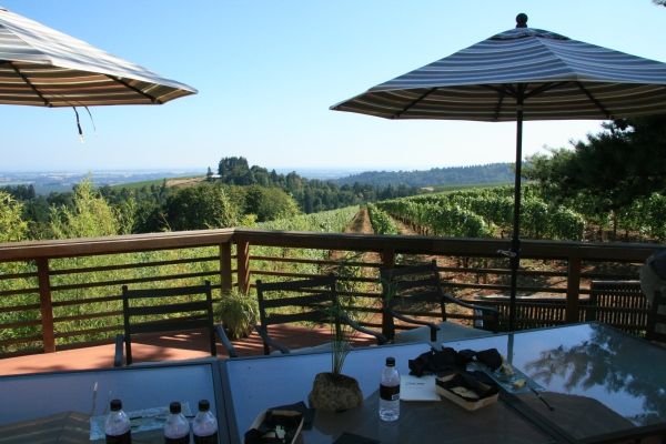 The views from the private deck at Torii Mor where the Terroir Tastings are held are stunning, to say the least.