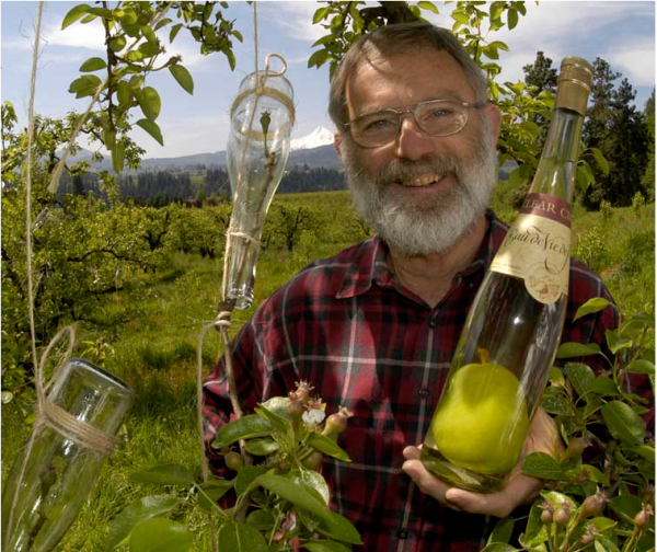 Steve McCarthy holds a bottle of his famous pear brandy with a pear encased in the bottle. Photo courtesy of Cleer Creek Distillery.