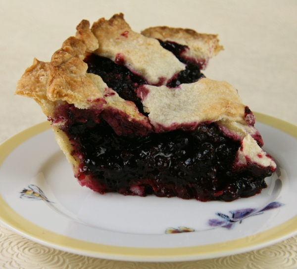 Huckleberry Pie sitting proudly for its portrait.
